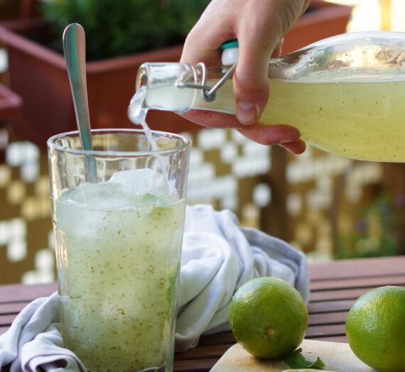 [Gastbeitrag] Rezept – Erfrischender Sommercocktail Mojito Slush